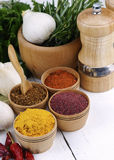 Different kinds of seasonings and herbs Stock Image