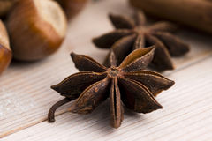 Different kinds of spices, nuts and dried oranges Royalty Free Stock Photo