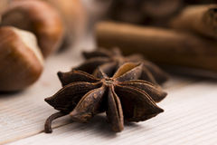 Different kinds of spices, nuts and dried oranges Stock Photos