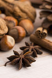 Different kinds of spices, nuts and dried oranges Royalty Free Stock Photos