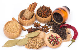 Different kinds of spices Royalty Free Stock Image