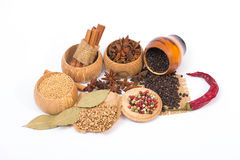Different kinds of spices Royalty Free Stock Photos