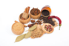 Different kinds of spices Stock Photography