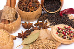 Different kinds of spices Stock Image