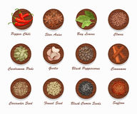 Different kinds of spices on wooden board. Realistic vector illustration. Royalty Free Stock Images