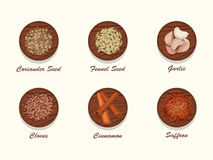 Different kinds of spices on wooden board. Royalty Free Stock Image