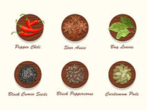 Different kinds of spices on wooden board. Set of different kinds of spices on wooden board. Collection of condiments - star anise, pepper chili, bay leaves Stock Photography