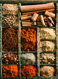 Different kinds of spices in a wooden box Stock Images