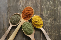 Different kinds of spices Stock Images