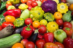 Assortment of vegetables. Different kinds of vegetables, assortment of fresh vegetables. Fresh harvest. Red tomatoes and yellow tomatoes Royalty Free Stock Photos