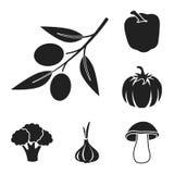 Different kinds of vegetables black icons in set collection for design. Vegetables and vitamins vector symbol stock web. Different kinds of vegetables black royalty free illustration