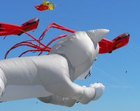 Different Kites. Kite Festival royalty free stock photo