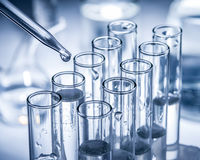 Different laboratory beakers and glassware. Royalty Free Stock Photos