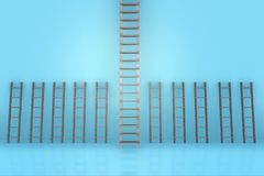 The different ladders in career progression concept Stock Images