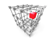 Different Leader Red Cube Out From Group Stock Image