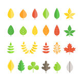 Different leaf collection Royalty Free Stock Images