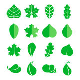 Different leaf set. Vector icons. Design eco elements isolate on white background Stock Images