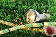 Different LEDs. Technologies on a lawn royalty free stock image