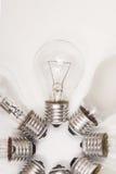 Different lightbulbs Royalty Free Stock Photos