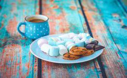 Different marshmallow cookies and chocolate Stock Image