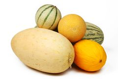 Different melon Royalty Free Stock Images