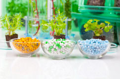 Different Mineral fertilizers Stock Image