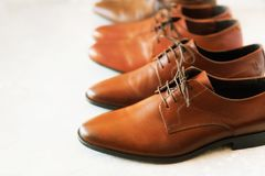 Different models and brown colors of shoes on gay background. Selective focus. Sale and shopping concept. Copy space. Banner. Classic fashion polished men`s Royalty Free Stock Photo