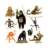 Different monkeys in different poses, 2016 symbol. Vector illustration set Stock Image