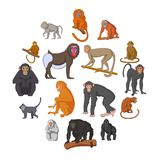Different monkeys icons set, cartoon style. Different monkeys icons set. Cartoon illustration of 16 different monkeys vector icons for web Royalty Free Illustration