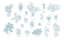 Different monochrome houseplants icons in line art style. Royalty Free Stock Photos