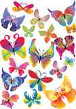 Different multicolored butterflies Royalty Free Stock Photography
