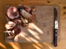 Different mushrooms and knife on wooden board Royalty Free Stock Images