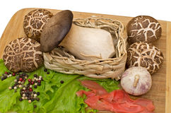 Fungi are different on the cutting board Royalty Free Stock Photos