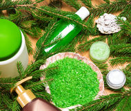 Different natural beauty products with branches of conifer tree Stock Photos