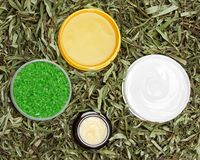 Different natural beauty products in green leaves Stock Photos