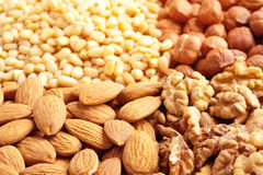 Different nuts Stock Images