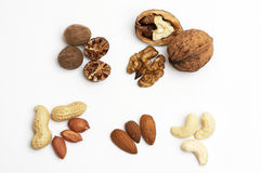 Different nuts Royalty Free Stock Photos