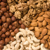 Different  nuts (almons, cashe. Ws, walnuts and filbers) close up Royalty Free Stock Image