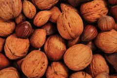 Different nuts background Stock Photography
