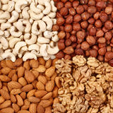 Different nuts close up Stock Photo