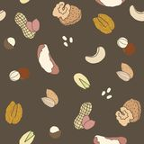 Different nuts pattern. Vector EPS 10 hand drawn seamless pattern Stock Photos