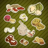 Different nuts, Set of stickers. Hand drawn illustrations Royalty Free Stock Image