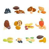 Different nuts vector set. Stock Photography