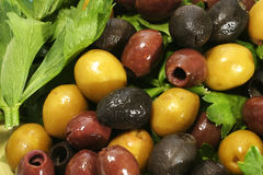 Different  olives and green salad Royalty Free Stock Images