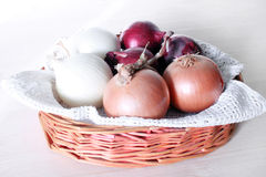 Different onions Stock Photography
