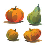 Different orange punpkin set. Autumn harves. Holidays. Vector illustration with set of different pumpkins. Autumn colorful orange green pumpkins. Modern cartoon Stock Photography