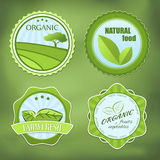 Different organic food labels Stock Image