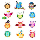 Different owls with different expressions Royalty Free Stock Photos