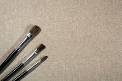 Different paintbrushes over canvas Royalty Free Stock Image