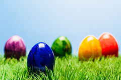 Different painted easter eggs in grass, blue background. Vairous different color painted easter eggs in grass, blue background Royalty Free Stock Photography